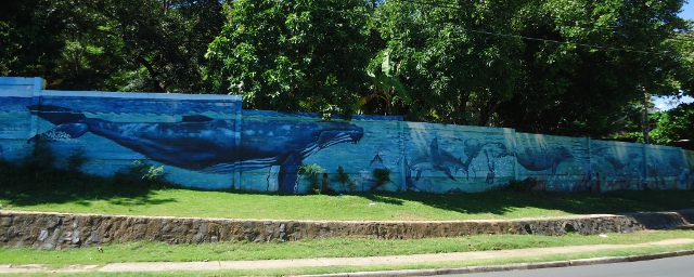 Pretty whale mural along one of the the main streets in town